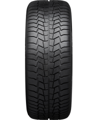 Шины Viking WinTech 205/55 R16 91H