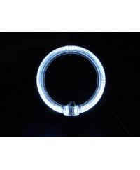Ангельские глазки Светодиодные кольца (ангельские глазки) BAXSTER 80MM (2шт)