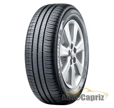 Шины Michelin Energy XM2 XL
