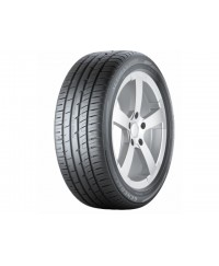 Шины General Tire Altimax Sport 255/40 R19 100Y